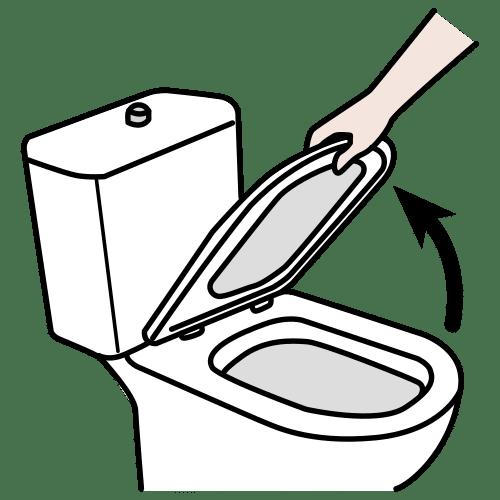 to raise, to lift the toilet seat
