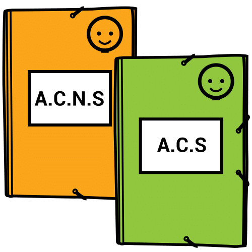 adapting the curriculum